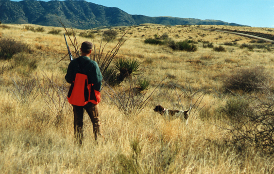 Dan Hoke hunting quail in Arizona
